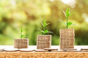 Online Coaching Grow Success Money Wealth Happiness